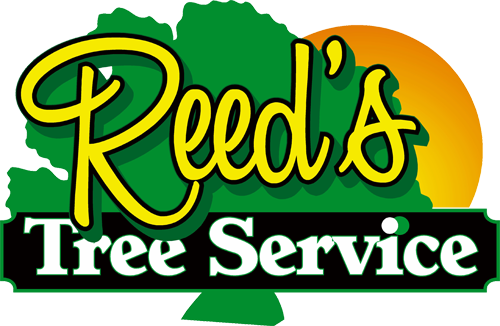 Reed's Tree Service