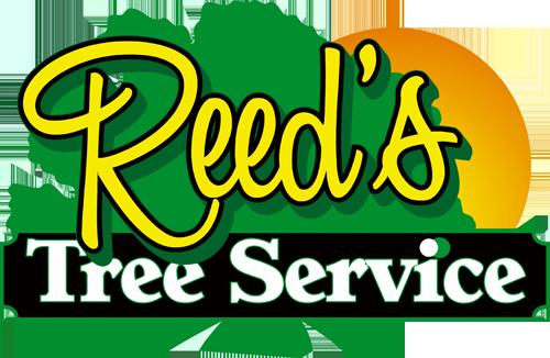 Reed's Tree Service